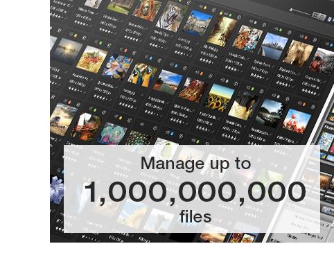 ww-large-files